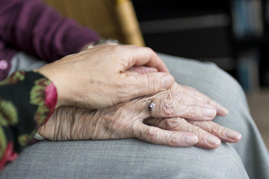 Paliativní péče v…
